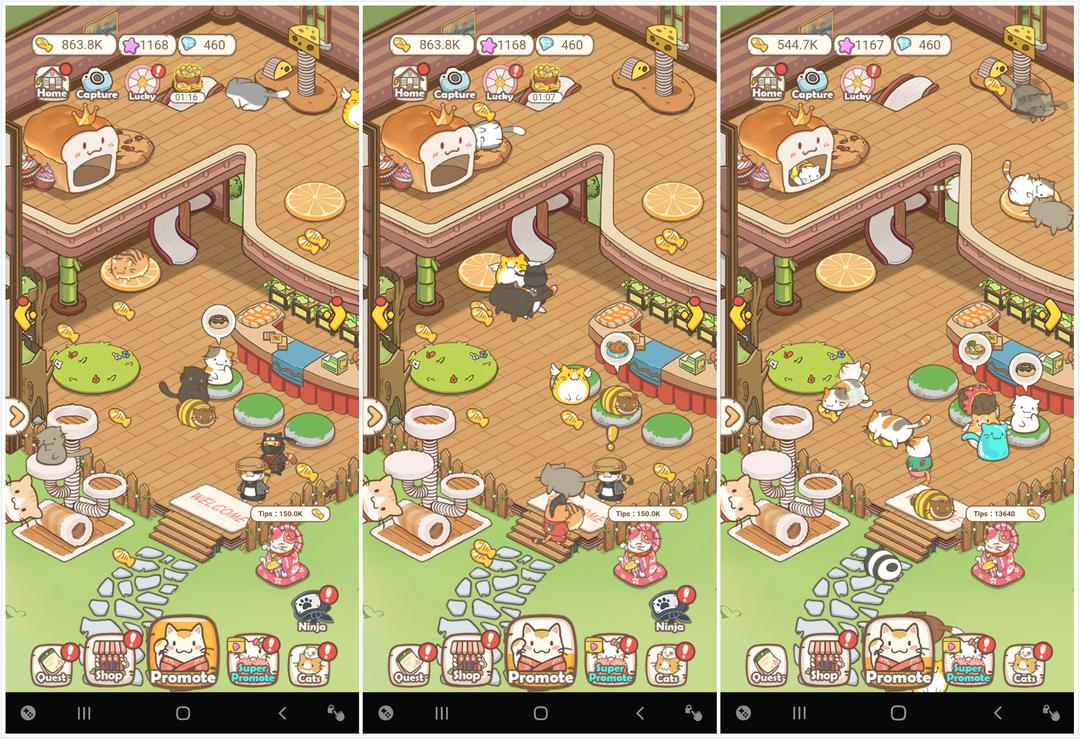 Cats Life - Idle Kitty Collector Review – Similar to Animal Restaurant but More Fun!-screenshot1